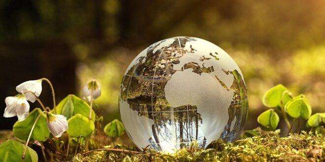 اخذ رتبه 3 مشاور محیط زیست