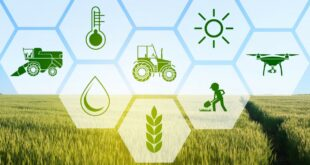 اخذ رتبه 5 کشاورزی