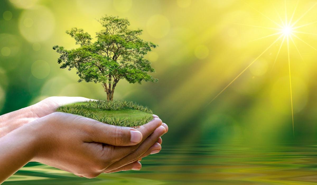 مدارک و شرایط اخذ رتبه 3 مشاور محیط زیست