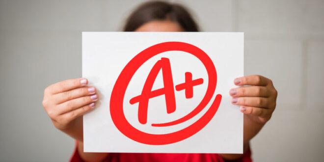 اهمیت مدرک تحصیلی در اخذ رتبه و رتبه بندی شرکت