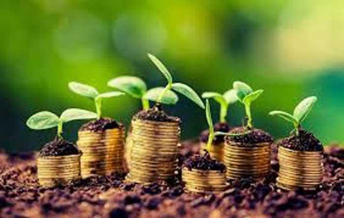 شرایط و مدارک لازم برای ثبت شرکت کشاورزی
